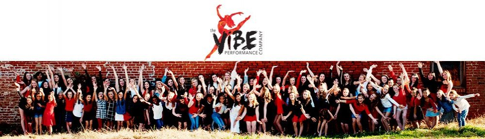 vibeperformancecompany